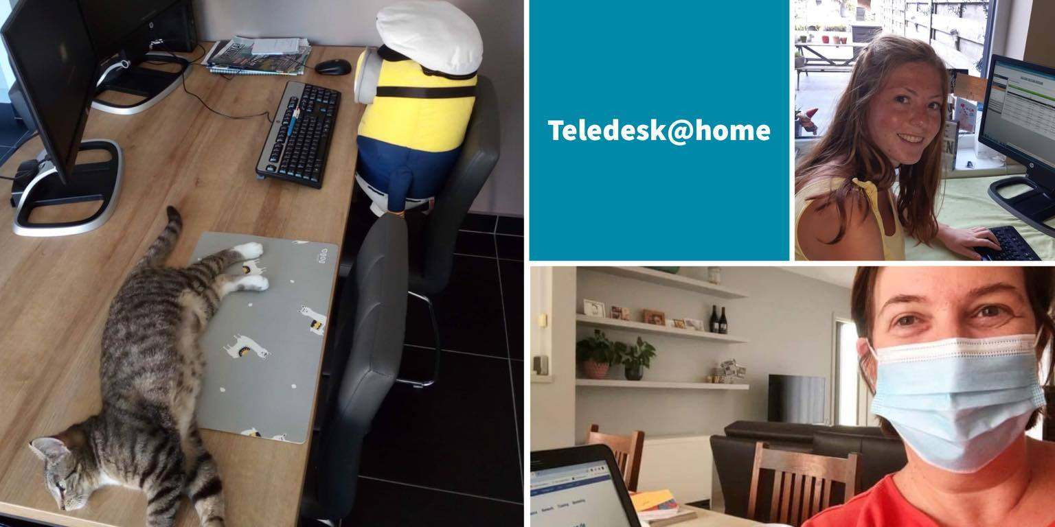 Teledesk Group vs Covid-19